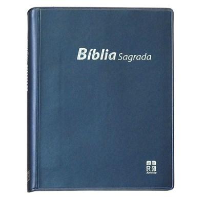 Bíblia Sagrada DN 42