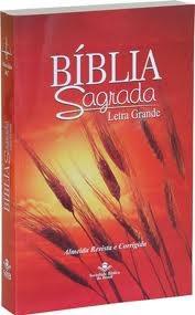 Bíblia RC 060LG capa trigo