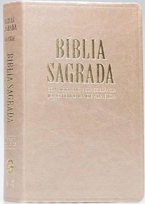 Bíblia Letra Gigante com dicionário e concordância
