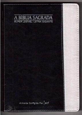 Bíblia super legível com letra gigante