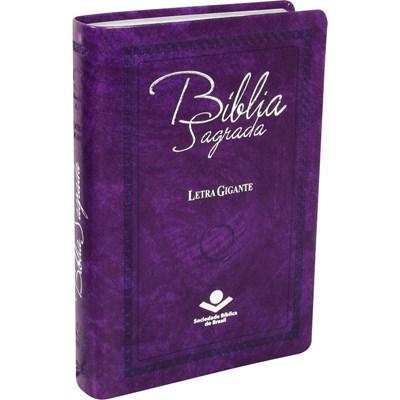 Bíblia Sagrada com letra gigante e índice digital