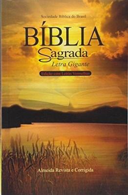 Bíblia Sagrada com letra gigante e palavras de Jesus em vermelho