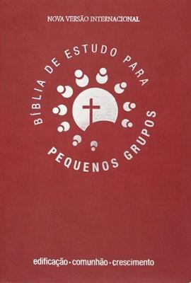 Bíblia de estudo para pequenos grupos
