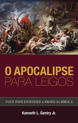 O apocalipse para leigos
