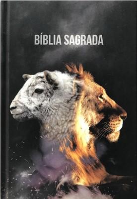 Bíblia Sagrada NAA