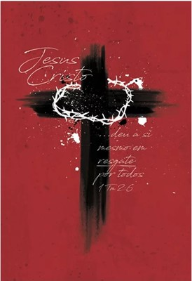 Bíblia Sagrada NAA Cruz de Cristo