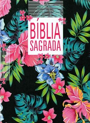 Bíblia Sagrada NAA slim com letra grande