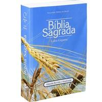 Bíblia RA 060LG com letra gigante
