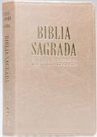 Bíblia Sagrada com letra gigante e com dicionário e concordância