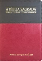 Bíblia ACF super legível - letra grande