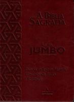 Bíblia ACF letra