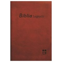 Bíblia Sagrada DN 24