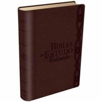 Bíblia de estudo colorida - capa cor vinho