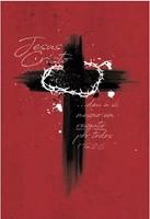 Bíblia NAA Cruz de Cristo
