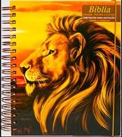 Bíblia Sagrada com pautas para anotações